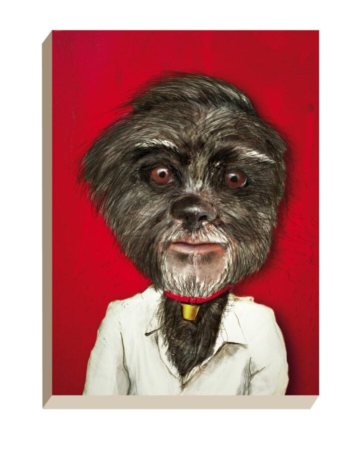 Maartse Hazen - Winkel | Portret George Clooney